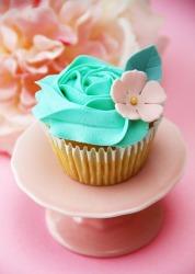 cupcake-68-resize